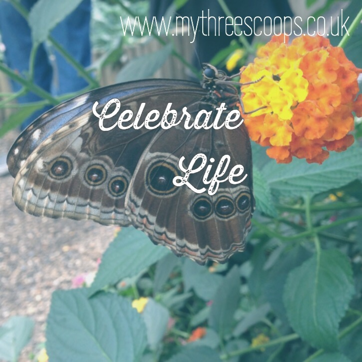 Life – Celebrate Yourself